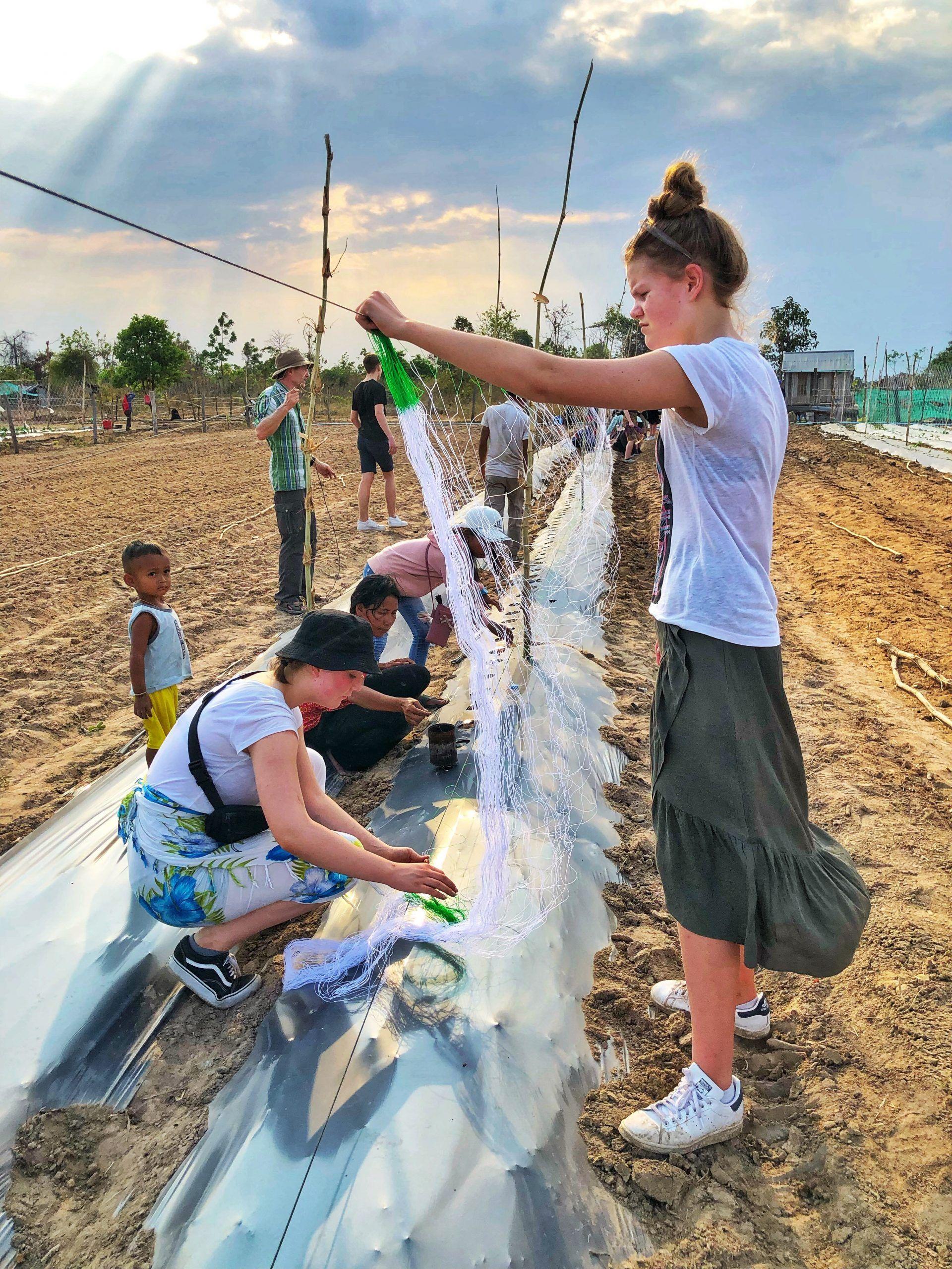 Elever hjælper med plantning af grøntsager i Cambodia - Odsherred Efterskole