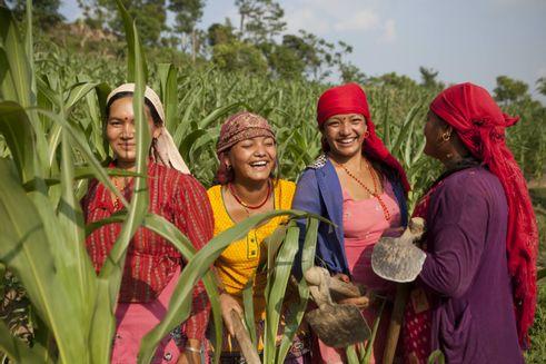 Et billede af fire kvinder på en mark, der står og smiler og griner.